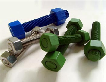 Stainless Steel 310/310S PTFE & XYLAN Coated Fasteners